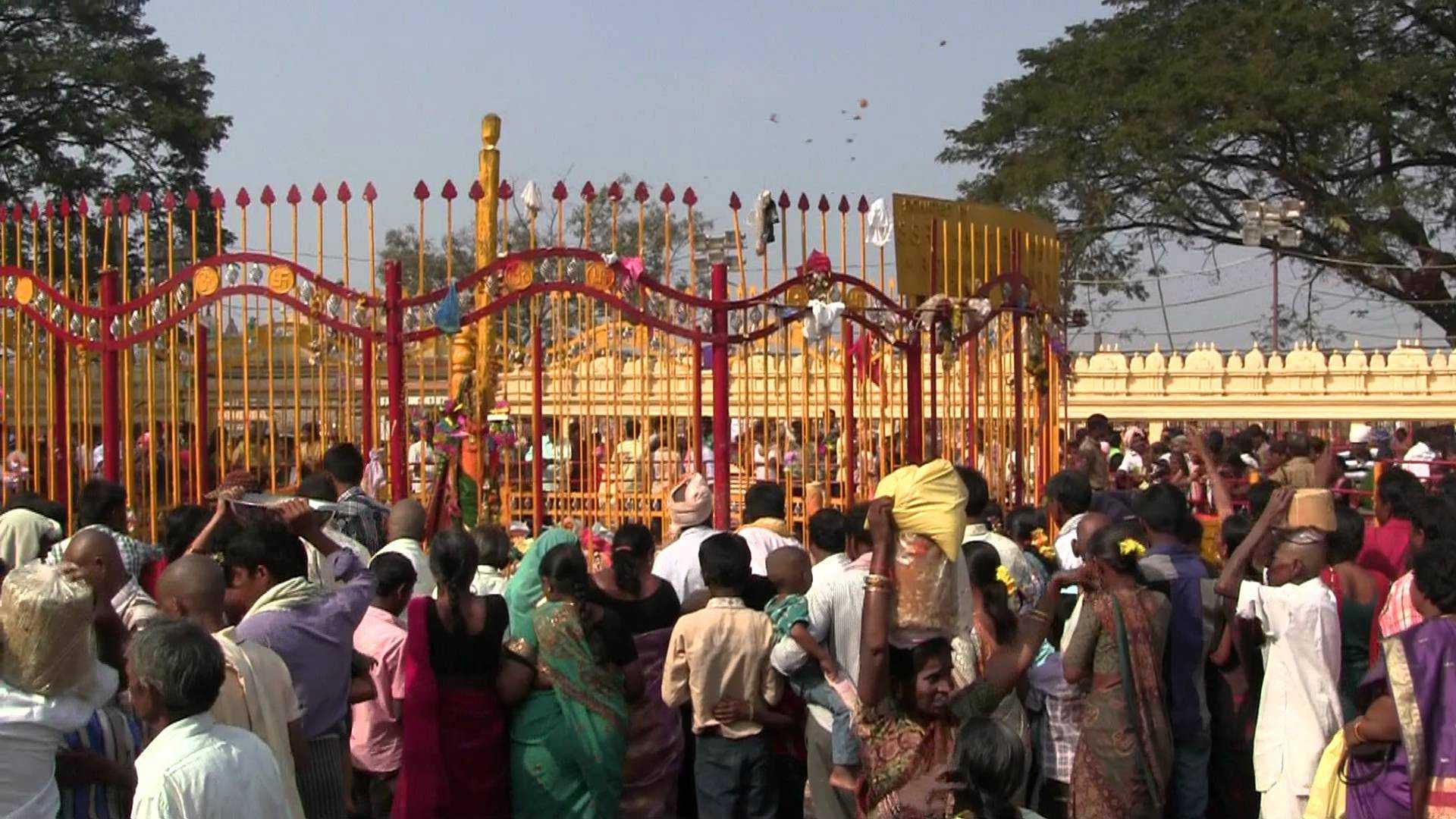 Medaram Jatara: 20L pilgrims offer prayers