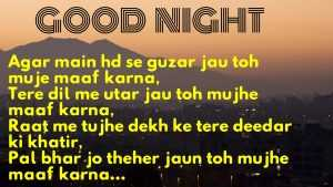 Romantic Good Night Love Shayari for Girlfriend in Hindi