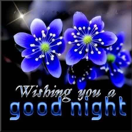 good night dear sweet dreams